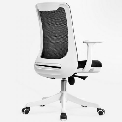 Sensational Professional Staff Computer Office Desk Mid Back Task Chair Pabps2019 Chair Design Images Pabps2019Com